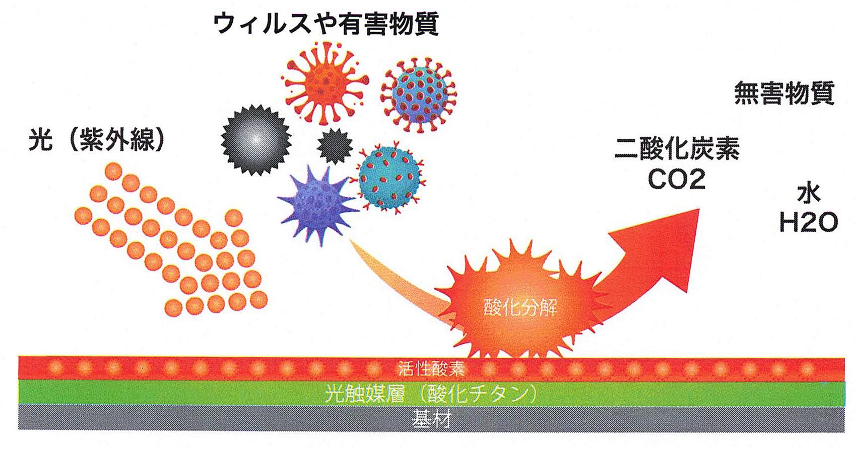 アヴァンコート酸化分解